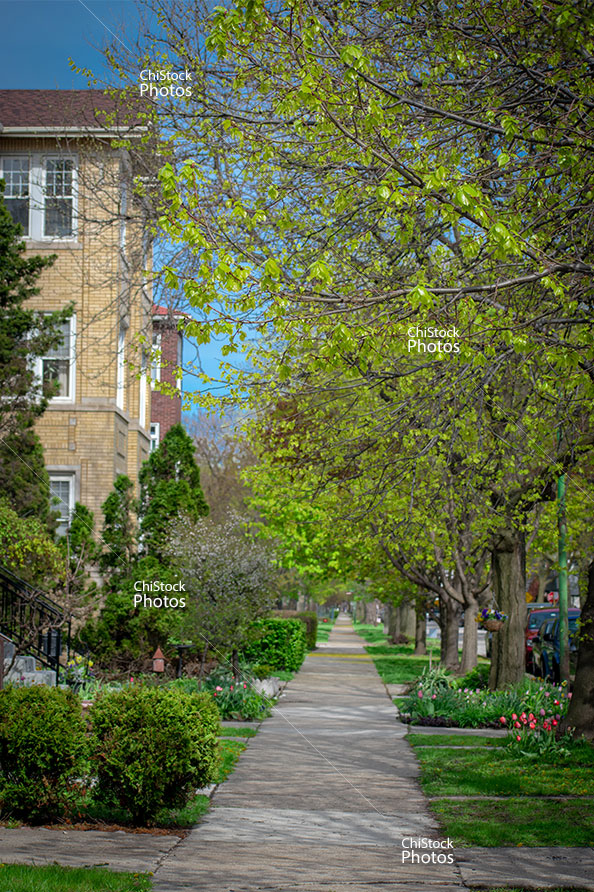 Albany Park Chicago Flat Apartment Buildings Side Street