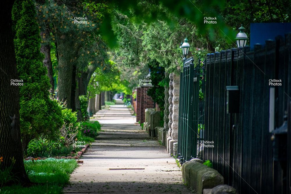 Douglas Neighborhood Chicago Michigan Avenue Sidewalk