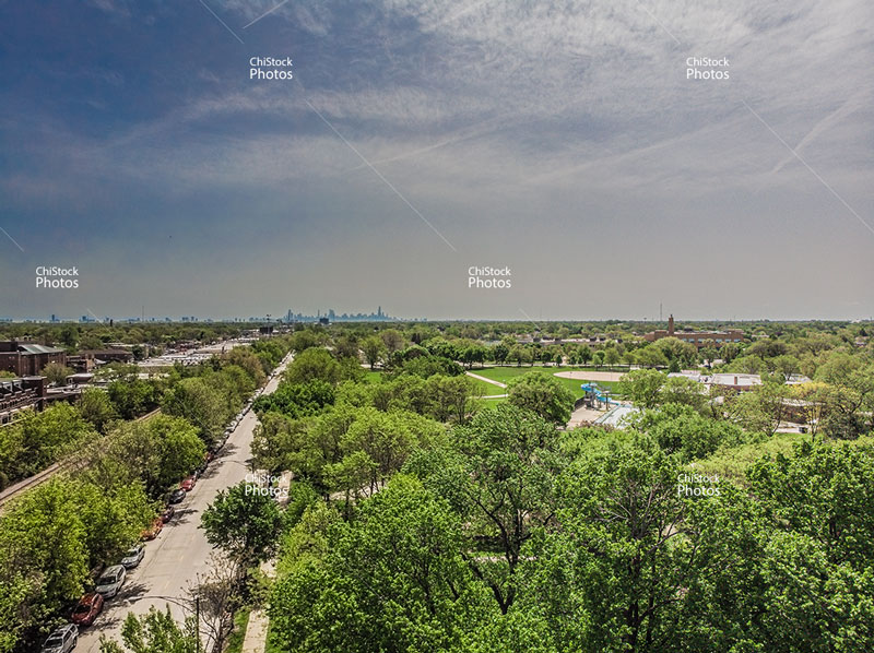 Norwood Park Avondale Avenue Taft Skyline