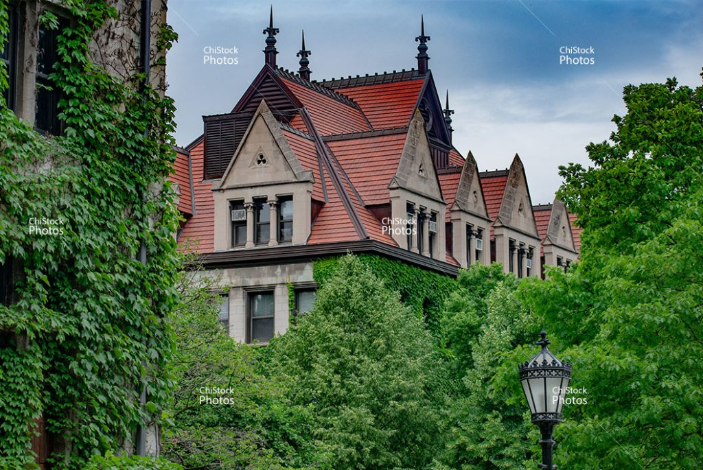 The University of Chicago Department of Mathematics Hyde Park