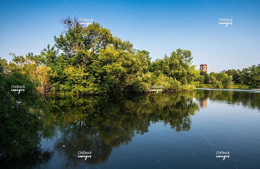 McKinley Park Lagoon Nature Area Chicago