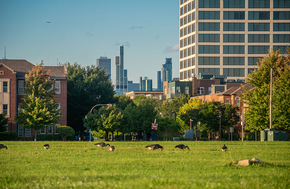 Stateway Park Douglas neighborhood Chicago