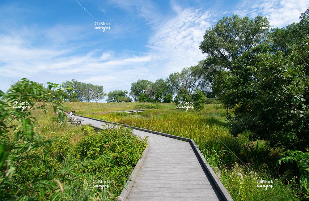 South Shore Nature Sanctuary Chicago