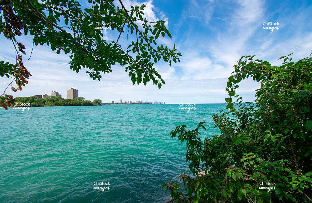 South Shore Nature Sanctuary and Lake Michigan with Chicago Skyline