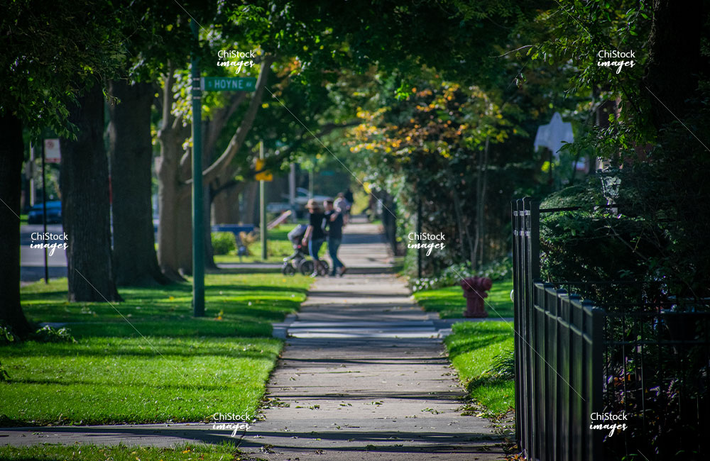 Sidewalk in Beverly neighborhood Chicago