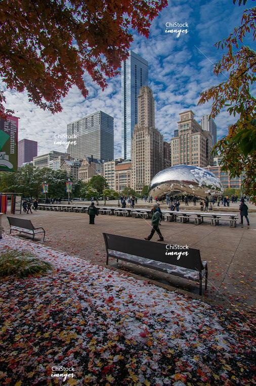 Cloud Gate Millennium Park Loop Chicago