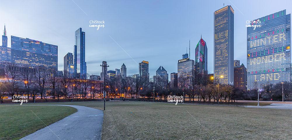 Grant Park Butler Field Chicago Loop Skyline View