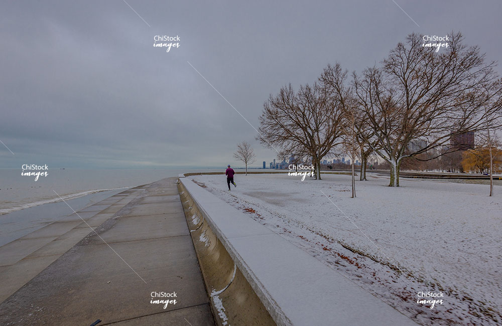Lake Michigan Lincoln Park Lake View Chicago