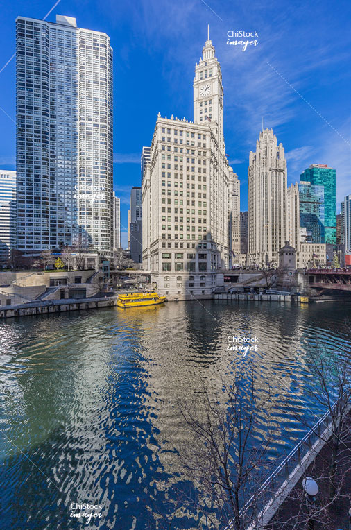 The Wrigley Building and The Tribune Tower Near North Side Chicago