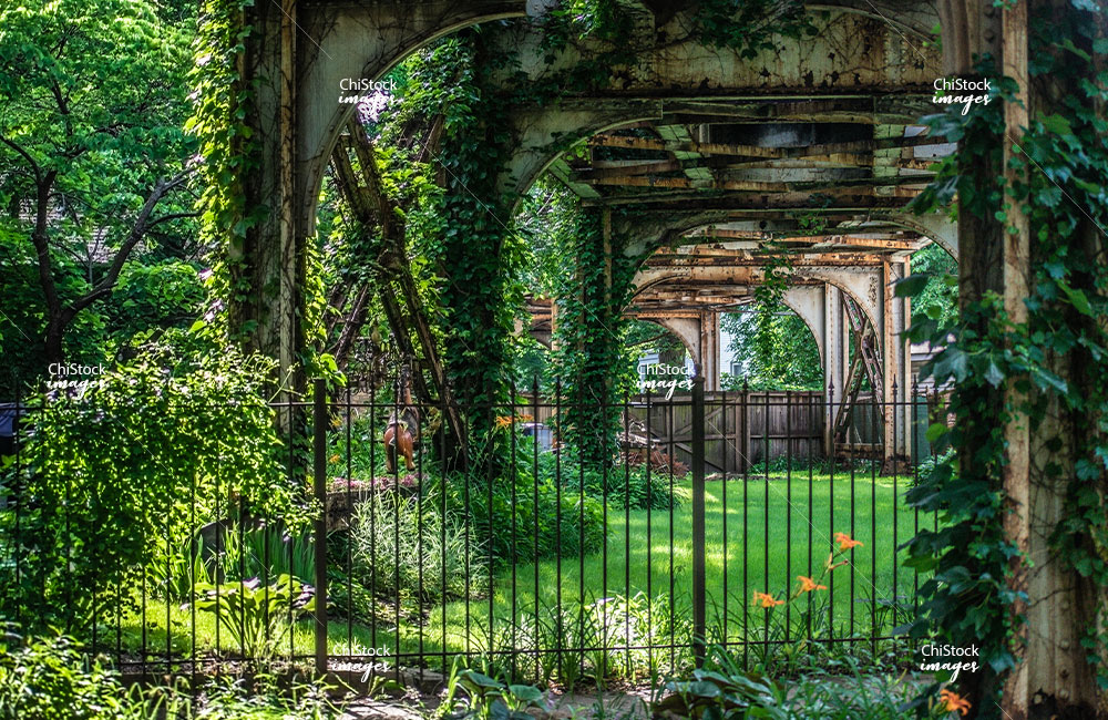 Under the Overgrown Brown Line L Tracks in Lincoln Square Chicago