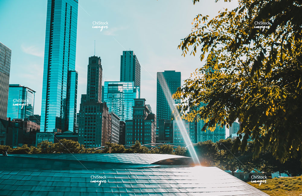 Pedestrian Bridge at the Millennium Park Downtown Chicago