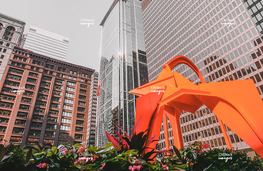 Calder's Flamingo in Downtown Chicago