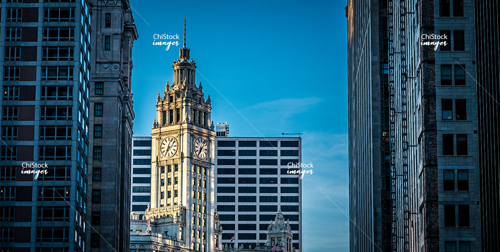 Looking Up at the Wrigley Building from Downtown Loop