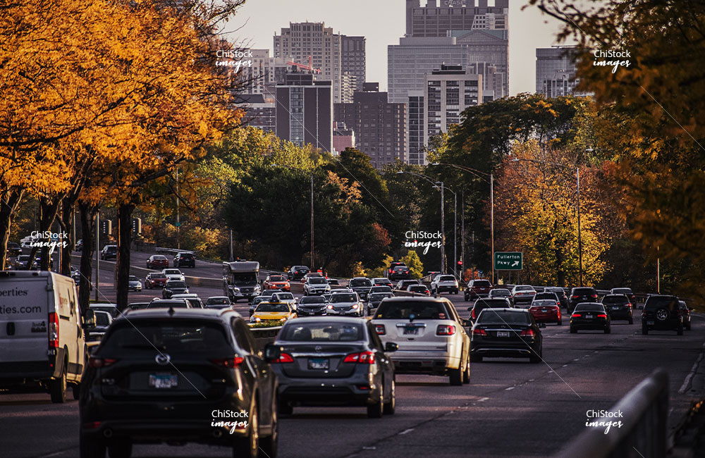 Lake Shore Drive Traffic with Colorful Autumn Leaves in Lincoln Park